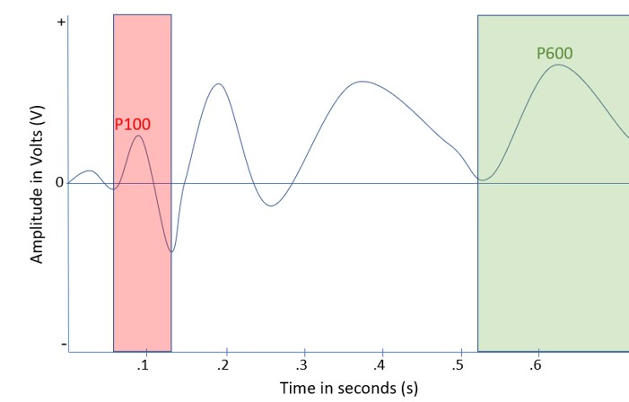 a graph with the p100 and p600. The P100 is the second small postive bump, the p600 is larger and the fifth positive bump.
