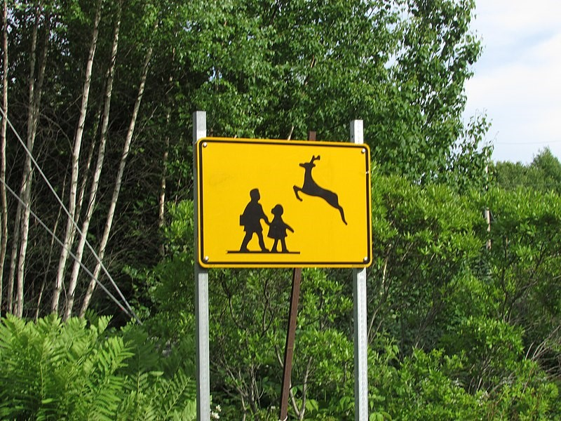 a sign with holding the silhouettes of a leaping deer and two school children.