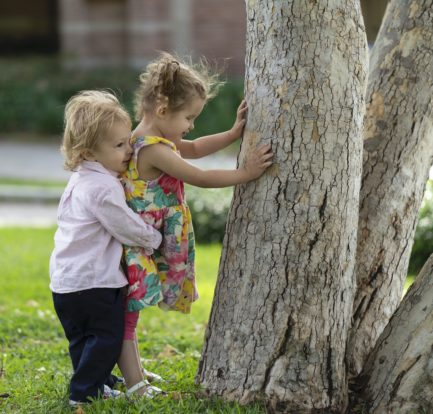 Here, Ellie (wearing a floral print dress and pigtails) explores a tree on the UCLA campus with her hands while her baby brother Sebastian gives her a big hug from behind (he is also blonde and wearing a pink shirt).